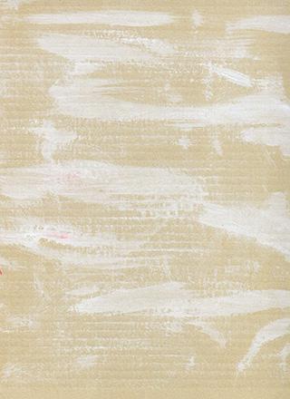 白の絵具の入ったダンボールのテクスチャ素材