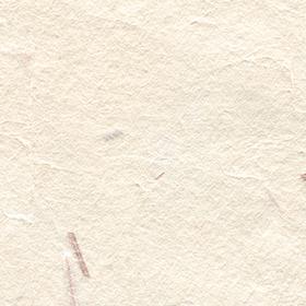 ベージュの木屑の入った和紙の背景素材 2のサムネイル画像