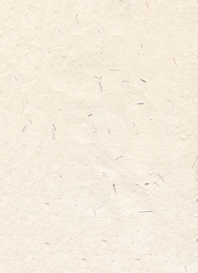 ベージュの木屑の入った和紙の背景素材 2