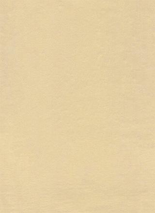ざらざらの質感の茶色のフリーテクスチャ素材