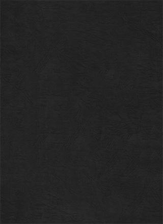 シボのある黒色のテクスチャ素材