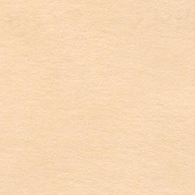 肌色の紙のきれっぱしの無料素材のサムネイル画像