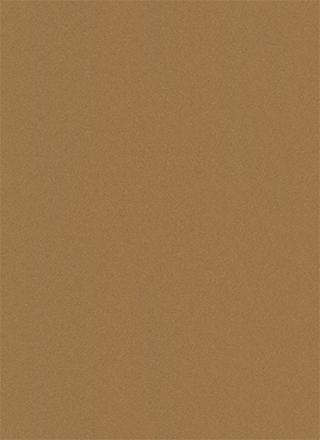 ベーシックなざらざらした茶色の紙のテクスチャ素材