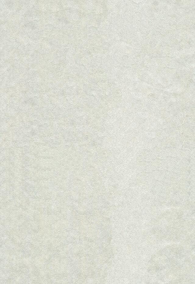 ざらざらした白い砂壁風のテクスチャ素材
